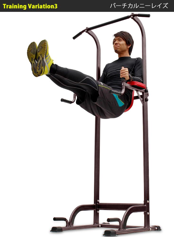 ぶらさがり健康器 懸垂 腕立て伏せ ディップス プッシュアップ バーチカルニーレイズ スポーツ アウトドア  スポーツ器具 フィットネス トレーニング